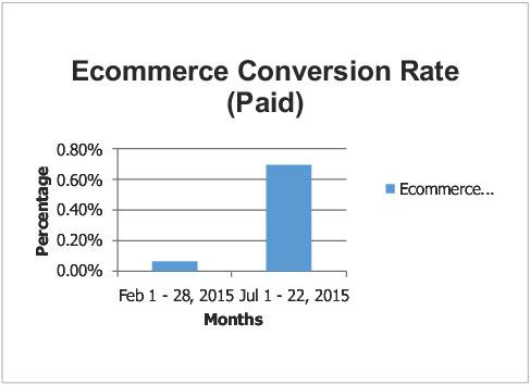 Ecommerce Conversion Rate (Paid)